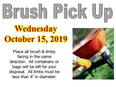Brush Pickup 2019 October