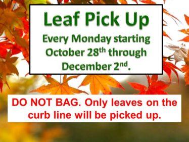 leaf pick up b