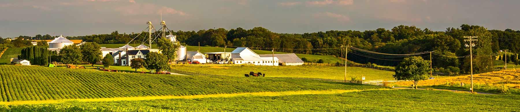 slide_farm2015
